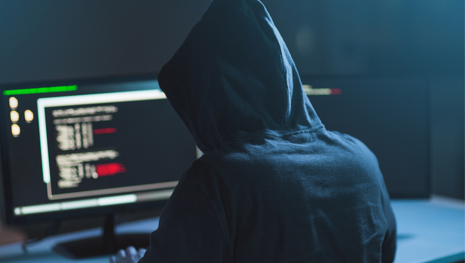 Gemeentebelang Harderwijk-Hierden maakt zich zorgen over IT-beleid en privacygegevens inwoners